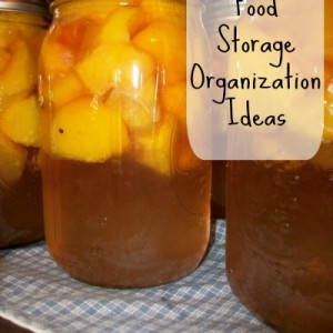 Organization Tips and Ideas for Food Storage