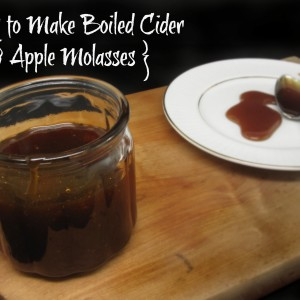 How to Make Boiled Cider (Apple Molasses)