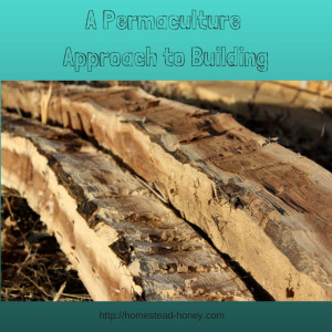 A Permaculture Approach to Building