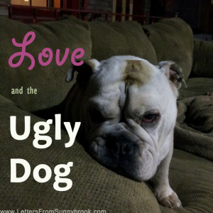 Learning to Love from the Ugly Dog