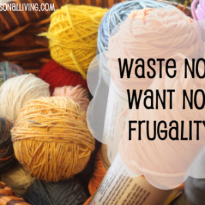 Waste Not Want Not Frugality