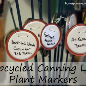 Upcycled Canning Lid Plant Markers