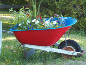Tips to Build a Raised Garden Bed on the Cheap Homestead