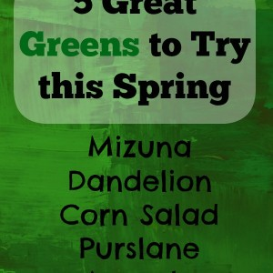 5 Spring Greens to try this Season