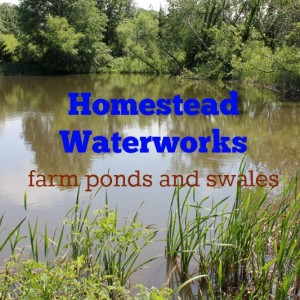 Homestead Waterworks: Farm Ponds and Swales