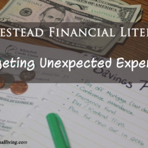 Homestead Financial Literacy: Budgeting Unexpected Expenses