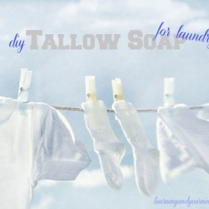 DIY Tallow Soap for Laundry