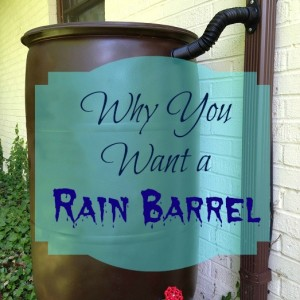 Why You Want a Rain Barrel