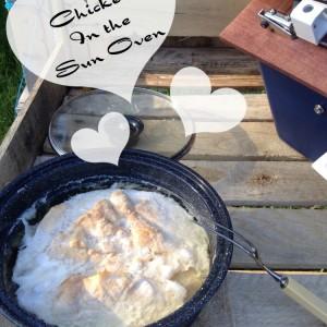 How to make chicken breasts in the All American Sun Oven