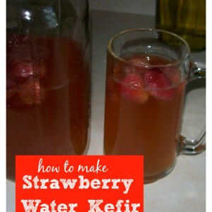 Make Your Own Strawberry Water Kefir