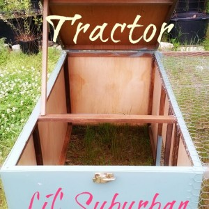 D.I.Y. – Upcycled Chicken Tractor