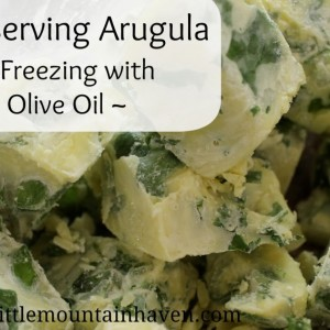 Preserving Arugula- Freezing in Olive Oil