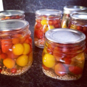 Easy Cherry Tomato Pickles: Capture the Summer in Jars