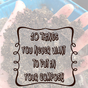 10 Things You Never Want to Compost
