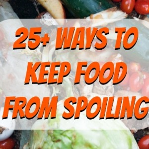 25+ Ways to Keep Food from Spoiling