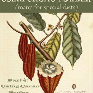 Using Cacao Part 4: 58 Recipes (Many for Special Diets)