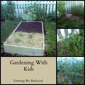 Gardening With Kids: A 6 Year Old's Garden Tour