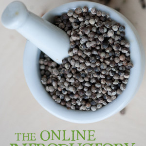 Online Herbal Course Giveaway! With Homestead Bloggers and Herbal Academy of New England