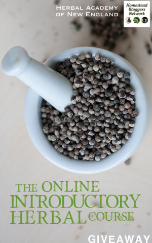 Giveaway and Discount for the Herbal Academy Online Introdcutory Herbal Course