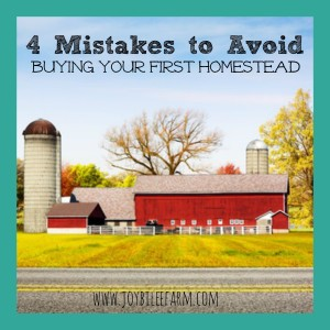 Mistakes to Avoid When Buying Your Homestead