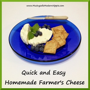 Quick and Easy Homemade Cheese