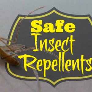Safe Insect Repellents