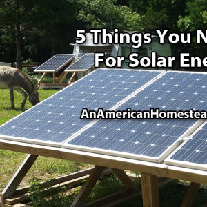 5 Must Haves For Solar Power