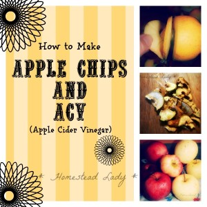 Apple Chips and ACV
