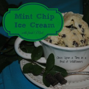 Mint Chip Ice Cream (with Fresh Mint)