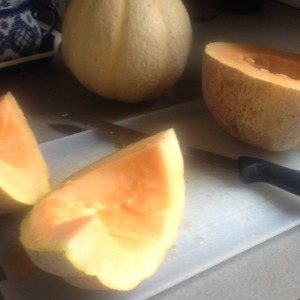 Freezing Cantaloupe for Later Use