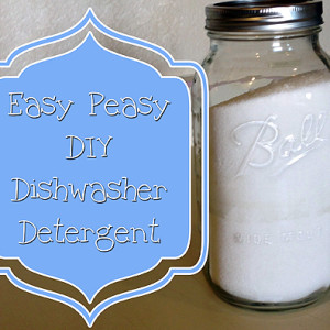 Easy Peasy DIY Dish Detergent