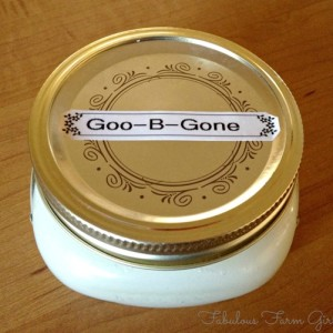 Homemade Goo-B-Gone