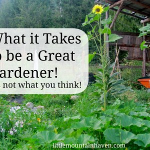 The Gambling Soul- What it Takes to be a Great Gardener