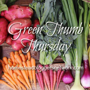 Green Thumb Thursday Linkup 10/1