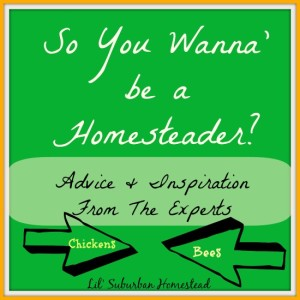 So You Wanna' Be A Homesteader