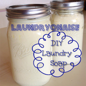 Laundryonaise – Super Easy DIY Laundry Soap