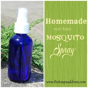 Homemade Non-toxic Mosquito Spray