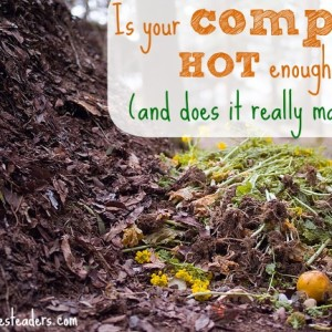 Is your compost hot enough?