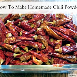 Homemade Chili Powder