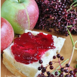 Seedless Elderberry Apple Jam