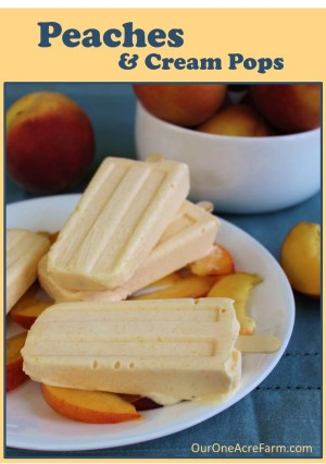 Peaches and Cream Pops - Homestead Bloggers Network