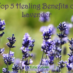 Top 5 Healing Benefits of Lavender Essential Oil