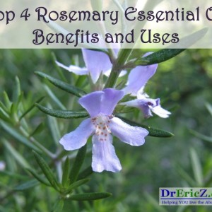 Top 4 Rosemary Oil Benefits and Uses