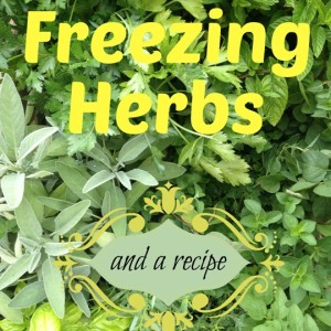 How To Freeze Herbs (and a recipe)