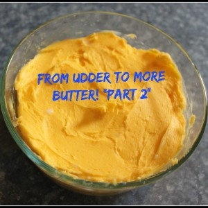 From Udder to More Butter-Making butter in a mixer
