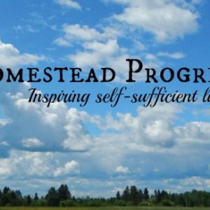 Homestead Progress to Inspire