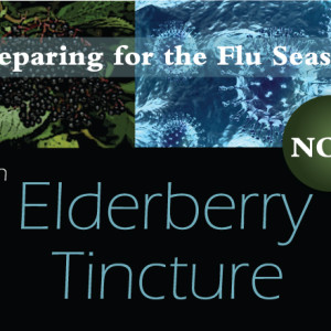 Preparing for Flu Season with Elderberry