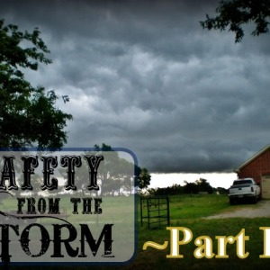 Safety From The Storm PART II: Stocking The Shelter