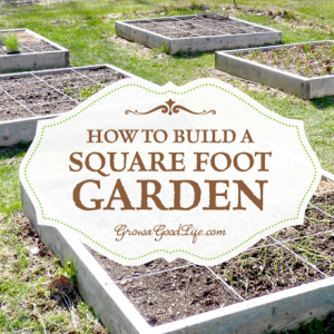 Expand Your Garden by Building Square Foot Gardens
