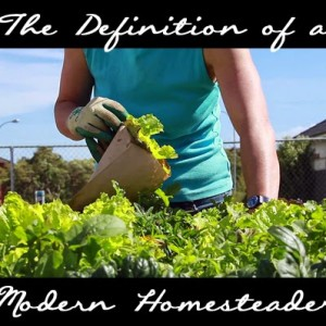 The Definition of Homesteading